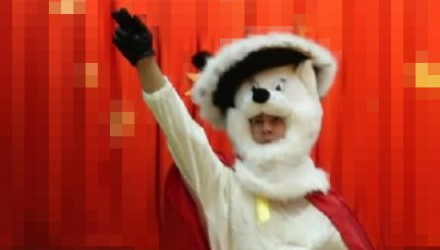 Mascot: Costume of a Cat