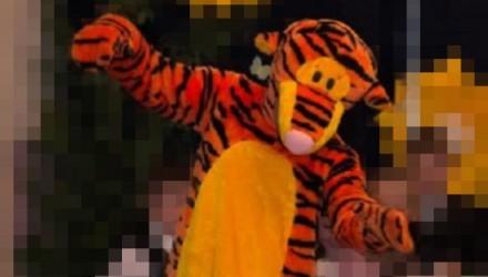 Mascot: Costume of Tigger