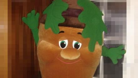 Mascot: Costume of an Acorn