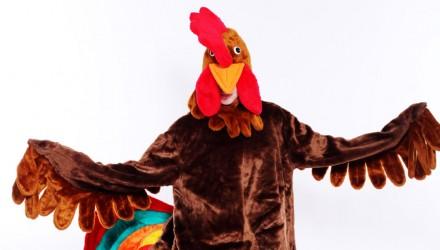 Mascot: Costume of a Cock