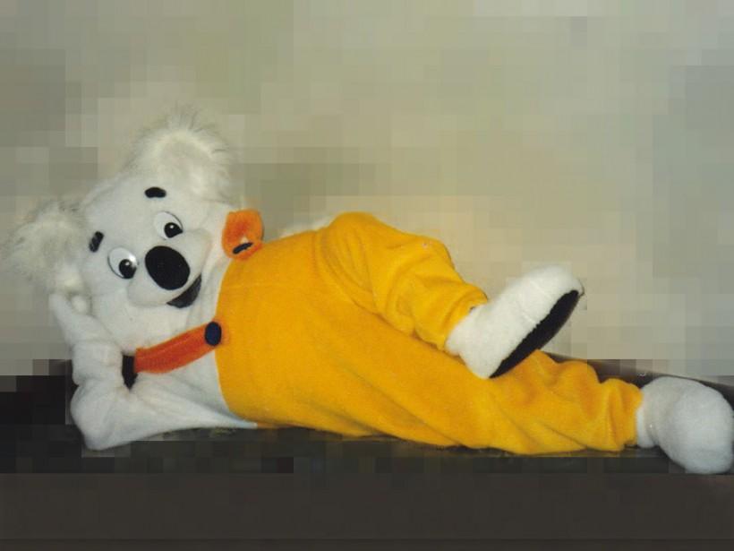 Mascot: Costume of a Koala