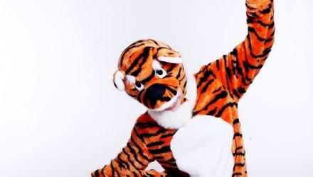 Mascot: Costume of a Tiger