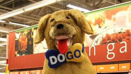 Stationary promo mascot: Dogo dog