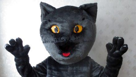 Riga Cup's mascot: cat costume
