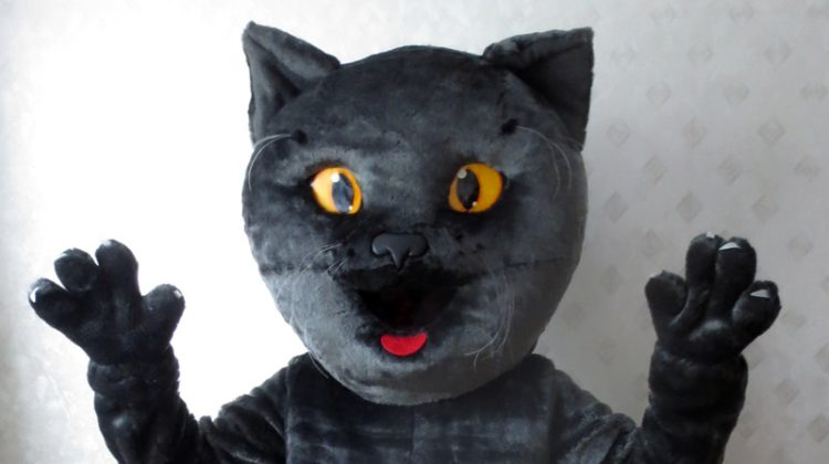 Riga Cupu0027s mascot cat costume & Custom mascot costumes design and production mascots rental repair ...