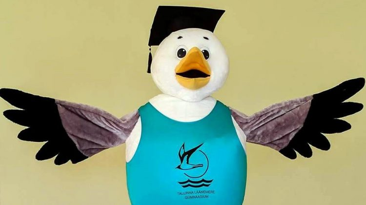 School's mascot: Seagull costume